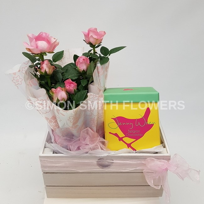 ROSE PLANT-with chocolates